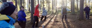 aktivitet-i-skogen